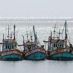 Pescherecci sul mare di Koh Phangan